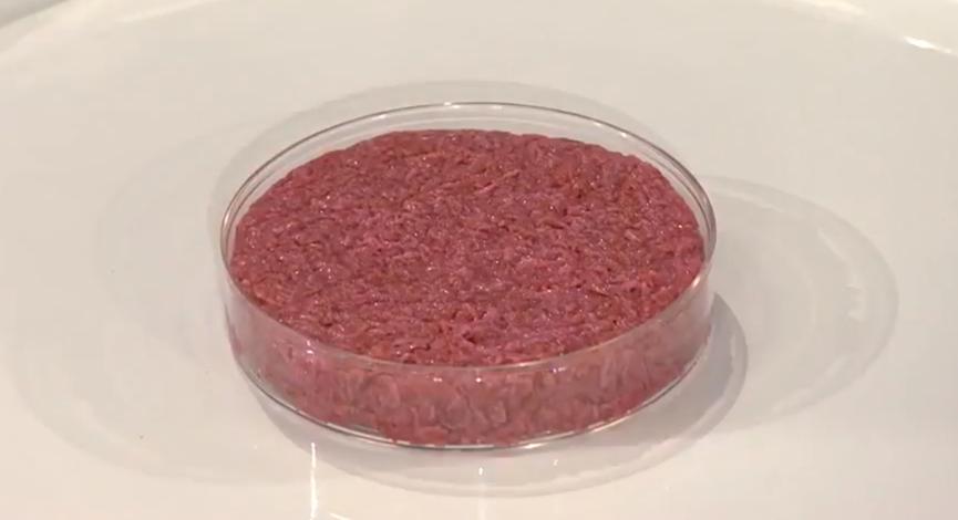 Το 1ο καλλιεργούμενο εργαστηριακά κρέας πριν το ψήσιμο.